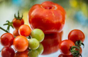 Los mejores alimentos quemagrasas: tomate